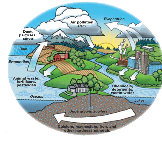 Graphic 1 Water Cycle